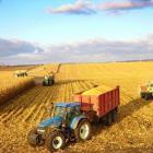 Burmistrz Wyszogrodu Mariusz Bieniek zaprasza na spotkanie rolników
